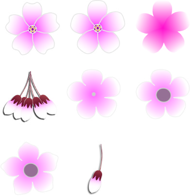 cherry-blossomcollection